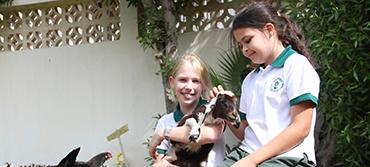 Billy-the-Goat-2-copy.jpg